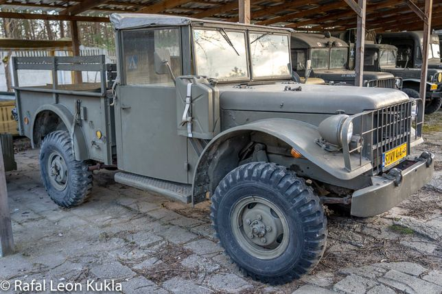 Dodge WC M37 // M43 // 1954 rok // Willys // Unimog
