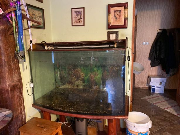 Akwarium - około 450 litrów - Mszczonów/osobiście