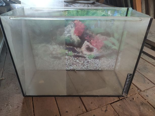 Акваріум для рибок