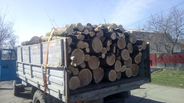 Продам дрова, обзели  по гарній ціні!!!