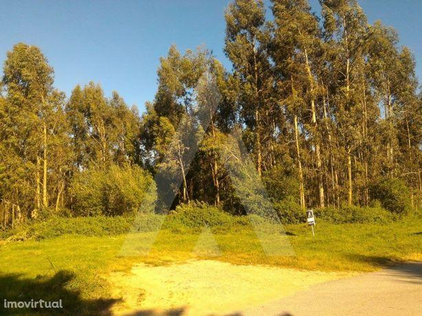 Terreno em Aveiro