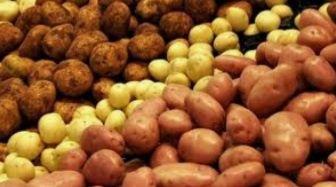 Картошка лук картофель доставка низкие цены