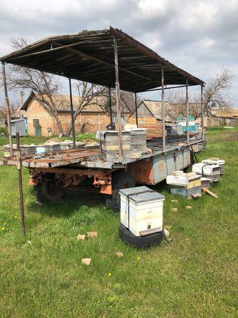 Прицеп для перевозки пчёл