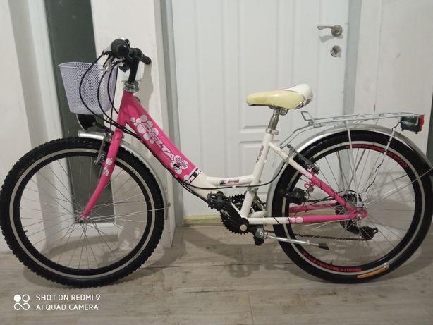 Велосипед на 24 колёсах