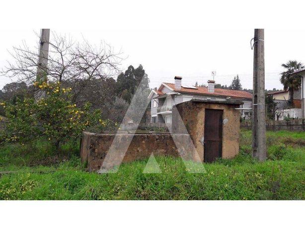 Terreno para construção na Branca - Albergaria-a-Velha