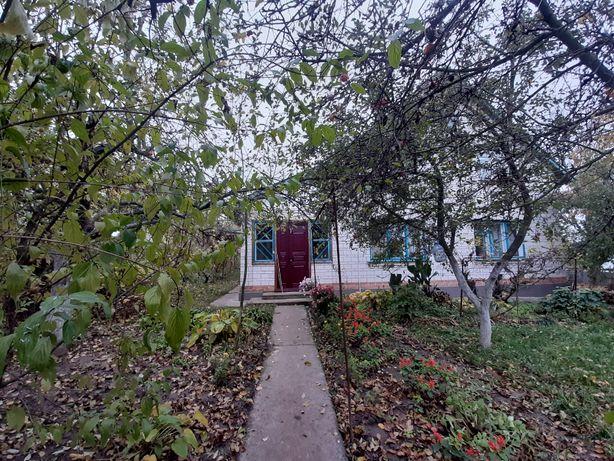 будинок в селі Ківшовата Таращанський район