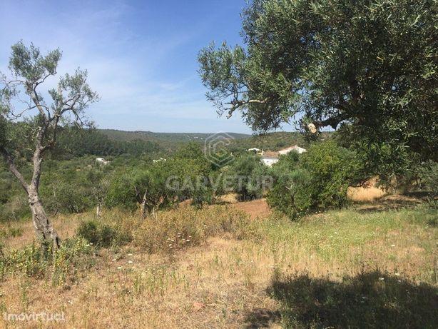 Terreno Urbano a 4km do Campo de Golfe, Loulé, Algarve