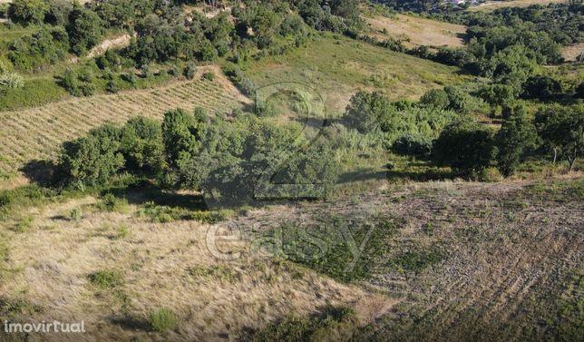 Terreno Rústico  Venda em Cardosas,Arruda dos Vinhos
