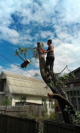 Спил Обрезка Удаление деревьев Расчистка уборка Выравнивание участка