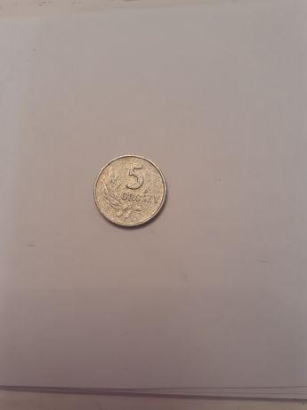 Moneta 5 groszy z 1962 roku