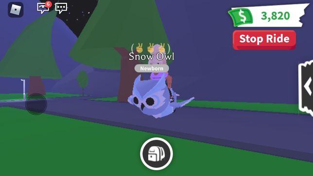 Ride snow owl ~ райд снежная сова