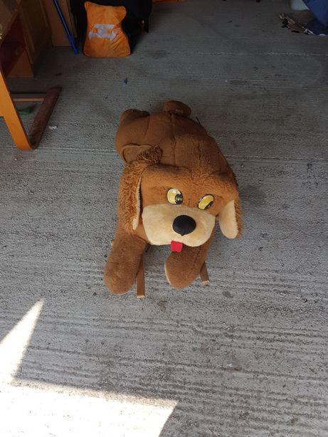 Pies bujany