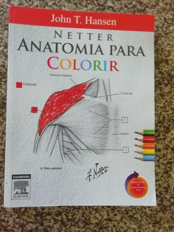 Anatomia para colorir  como novo