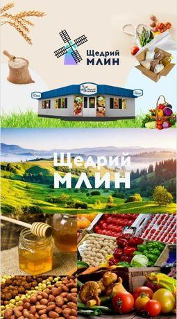 Інвестиції в Український IT проект