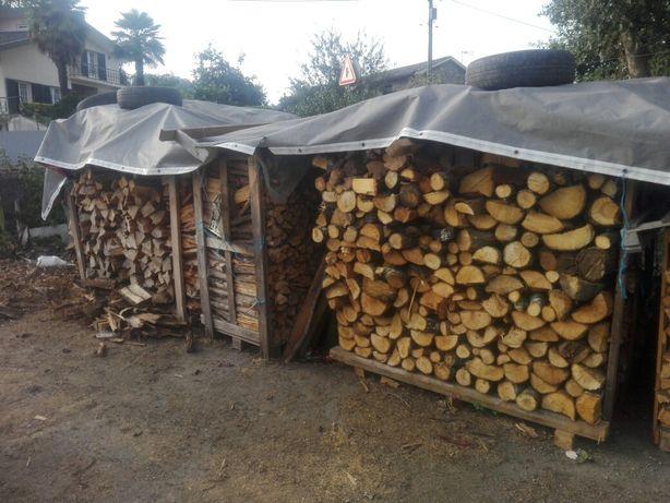 Lenha seca eucalipto/carvalho/pinheiro
