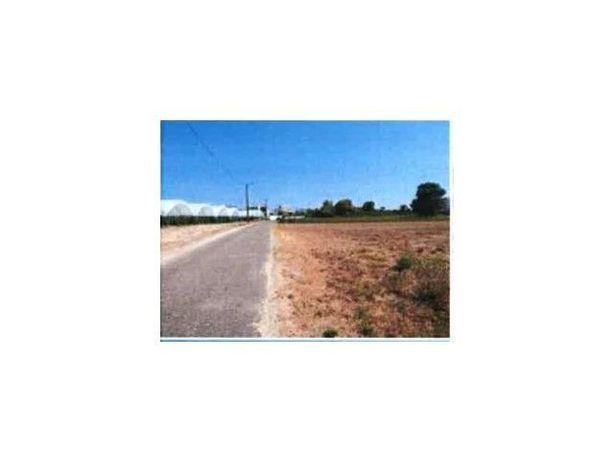 Terreno em Vagos (Aveiro) - Venda Judicial - Redução De Preço