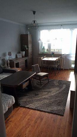 MIeszkanie 3 pokojowe do wynajęcia. Racibórz