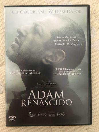 Filme DVD Adam Renascido