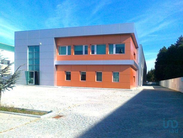 Loja - 1820 m²