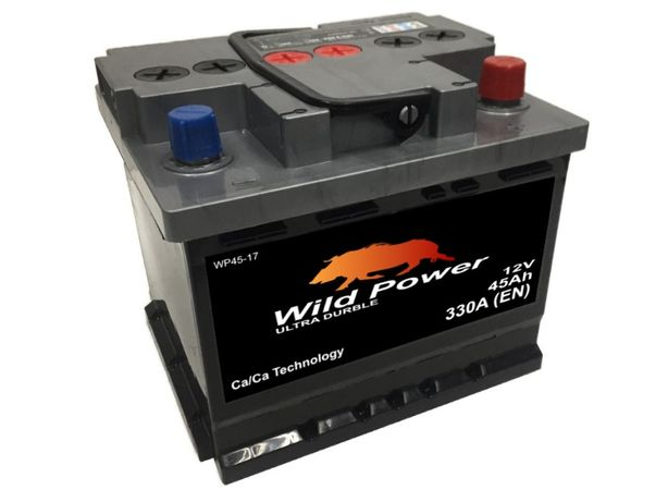 Akumulator Wild Power WP45-17 12V 45Ah 330A P+ B39