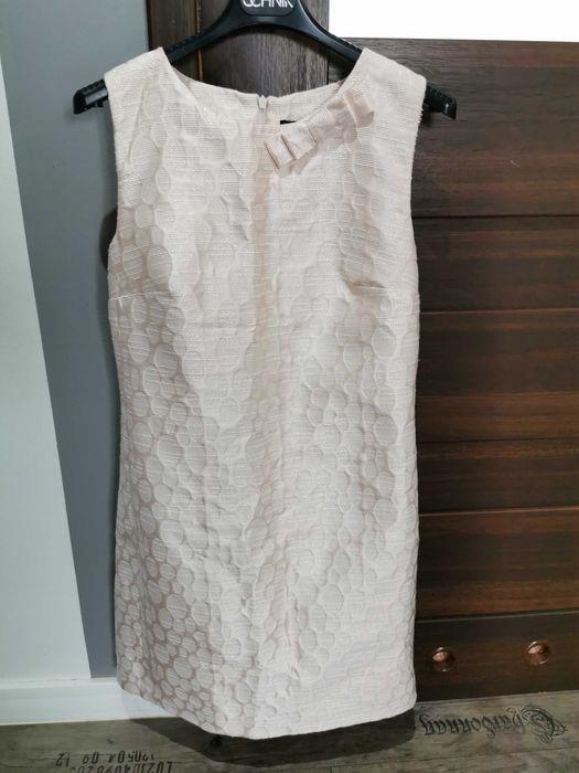 Sprzedam sukienkę Czerwin - image 1