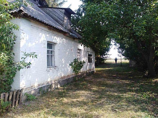 Продам будинок в с. Павлівка, Погребищенського району
