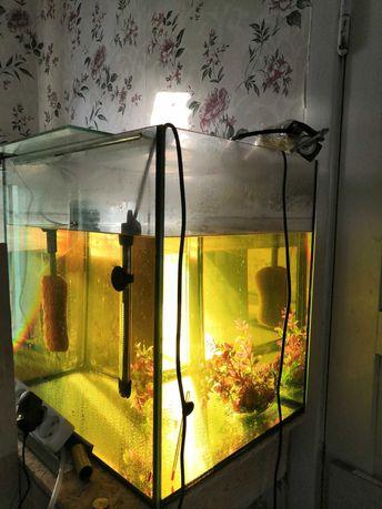 Продам аквариумы