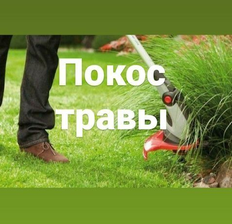 Покос травы на вашем участке