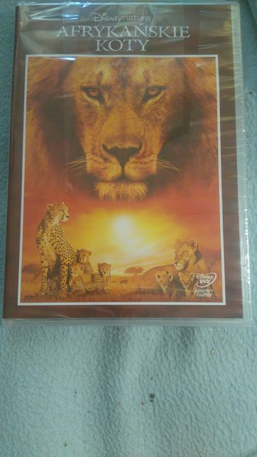 Film dvd Disney Nature Afrykańskie Koty