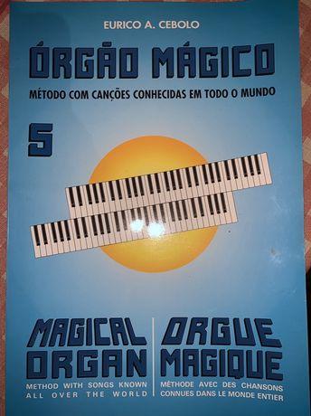 Livro com canções para aprender a tocar