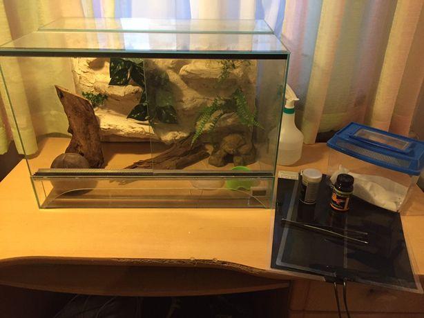 Terrarium ze ścianką i wyposażeniem  dla gekona, węża, agamy 60x40x40