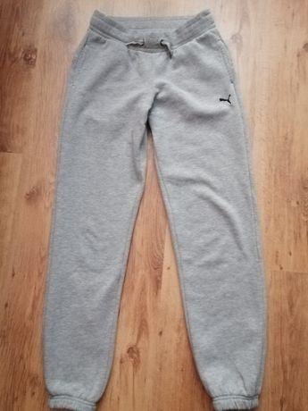 Spodnie dresowe Puma 164