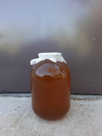Мёд подсолнечный, мед подсолнух. Доставка по городу бесплатно!
