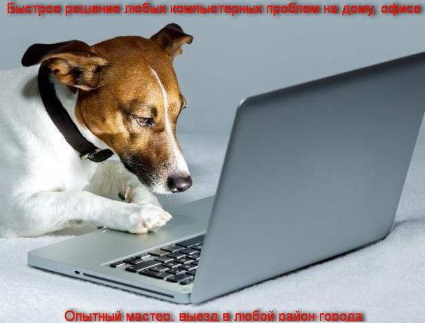 Установка windows, программ, чистка, ремонт компьютеров, ноутбуков.