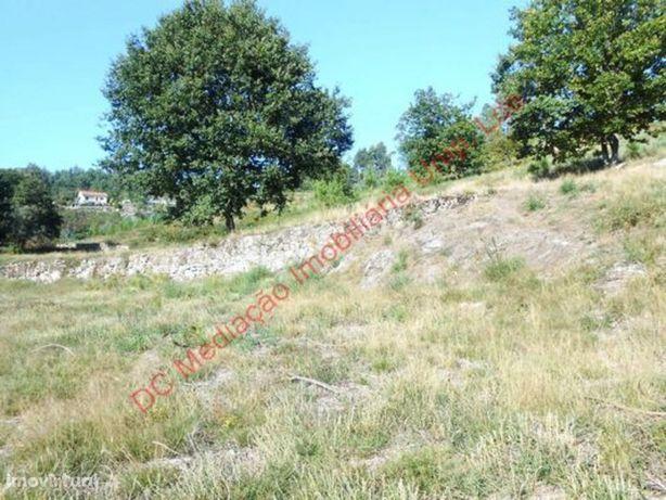 Terreno  Venda em Fonte Arcada e Oliveira,Póvoa de Lanhoso