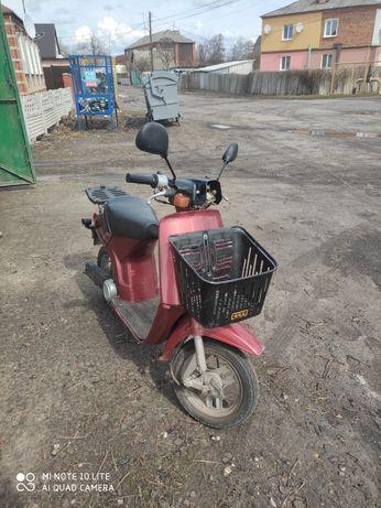 Продам скутер Honda Tact