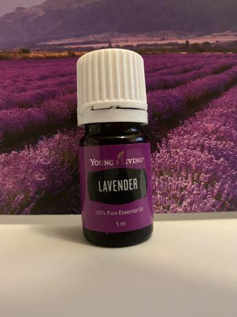 Óleo essencial puro de Lavanda Lavender