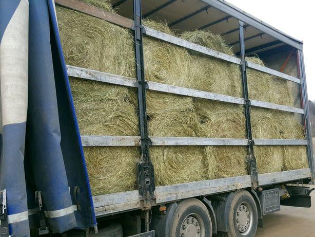Siano słoma dla koni bardzo dobrej jakości ze stodoły stała współpraca