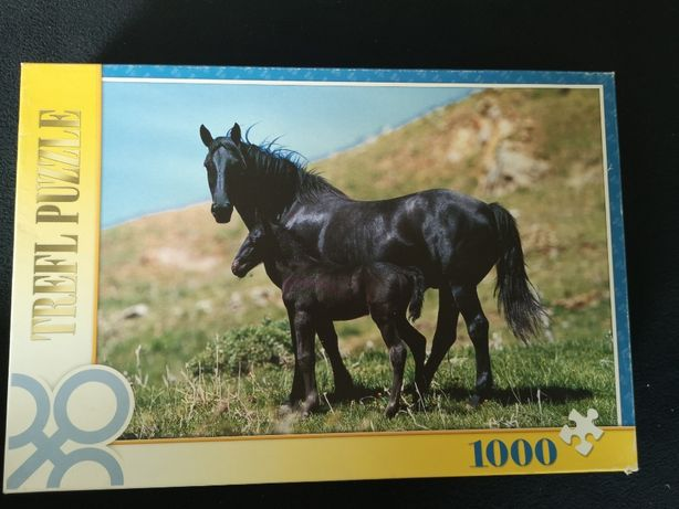 Trefl 1000 elementów - 10133 Czarne konie