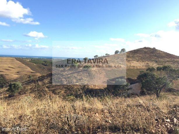 Terreno rústico com 41 hectares a 10 minutos de Tavira.
