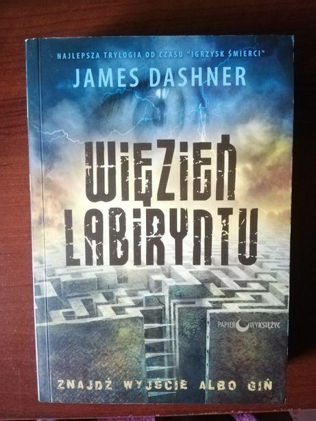 """Więzień labiryntu"" James Dashner"