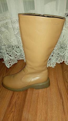 Женские кожаные сапоги CLarks