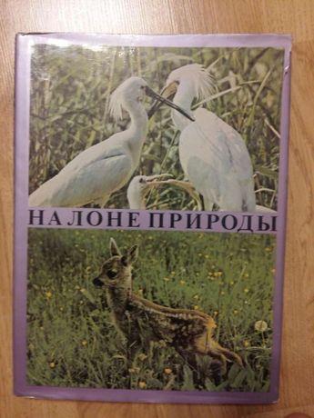Rosyjski album o zwierzętach
