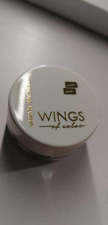 Aa wings pomada do brwi