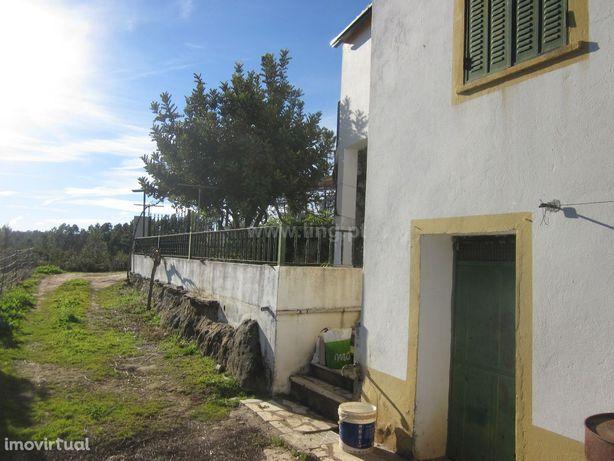 Quintinha T3 Venda em Santo André das Tojeiras,Castelo Branco