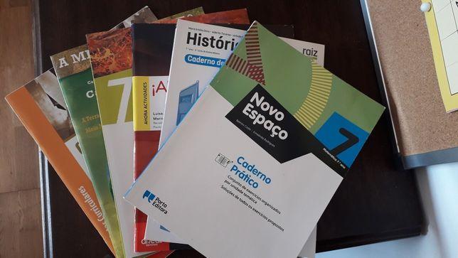 7°ano livros de Fichas