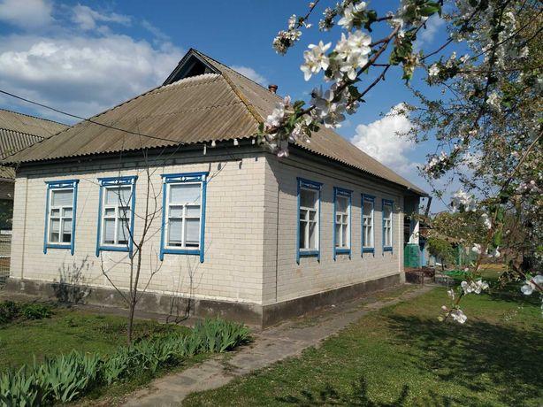 Продається будинок в селі Сахнівка, Корсунь-Шевченківського району