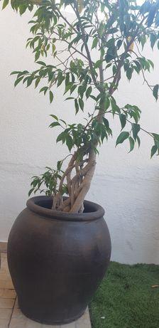 Vaso cerâmica grande