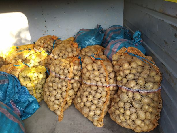 Vineta ziemniaki ekologiczne z transportem