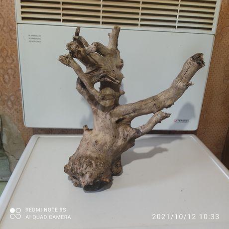 большое Дерево сухое для комнаты